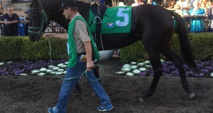 ".""CHOA CHOM""..(เจ้าจอม) ม้าเพศเมียวัย 4 ขวบปี ที่มีเจ้าของ เป็นคนไทยชื่อ..""สถาพร ทองจันทร์"".. (หม่อง) คว้าชัยชนะ เป็นครั้งที่ 2 ในปีนี้ ผ่านมาเมื่อวันอาทิตย์ที่ 13 รายการ..""Betty Grable Stakes""...เงินรางวัล $100,000 ที่สนามม้า ... Del Mar Race Track ..."