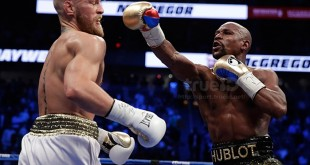Mayweather McGregor Boxing